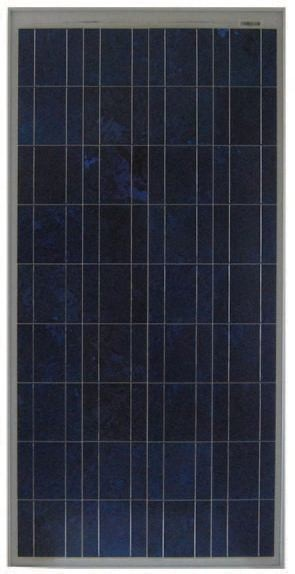 SOLAR MODULE 80 WATTS NE-80E2E